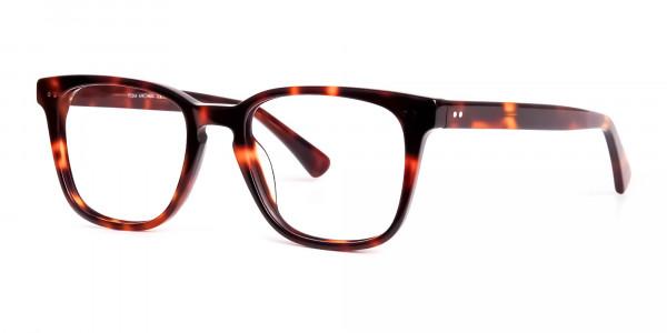 havana-and-tortoise-Shell-Wayfarer-glasses-frames-3