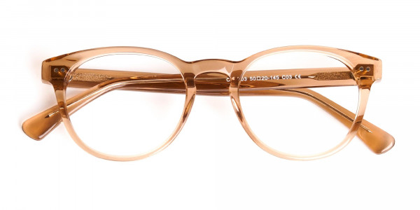 crystal-clear-or-transparent-brown-full-rim-round-glasses-frames-6
