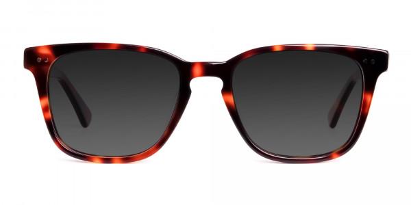 tortoiseshell-wayfarer-full-rim-dark-grey-tinted-sunglasses-frames-1