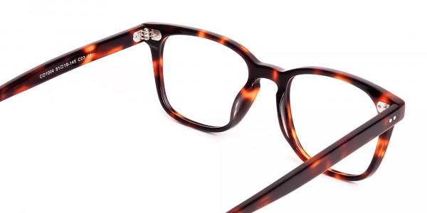 havana-and-tortoise-Shell-Wayfarer-glasses-frames-5