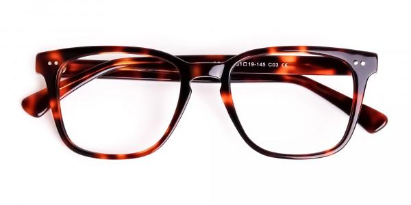 havana-and-tortoise-Shell-Wayfarer-glasses-frames-6