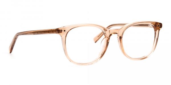 crystal-clear-or-transparent-brown-round-wayfarer-glasses-frames-2