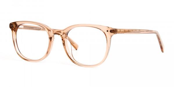 crystal-clear-or-transparent-brown-round-wayfarer-glasses-frames-3