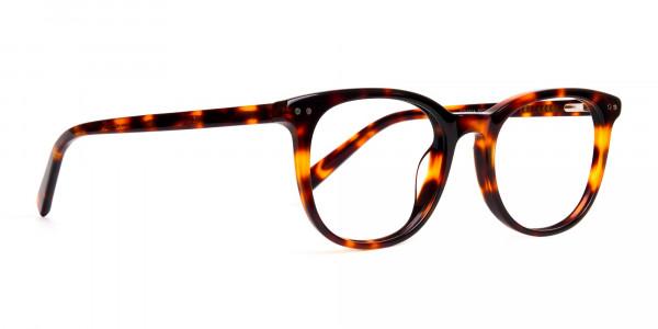 tortoise-shell-wayfarer-round-full-rim-glasses-frames-2