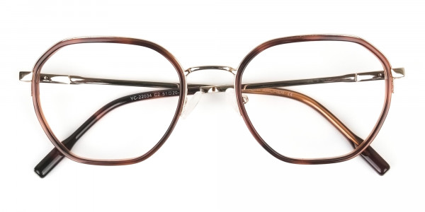 Wayfarer Brown Red Tortoise and Gold Geometric Glasses - 7
