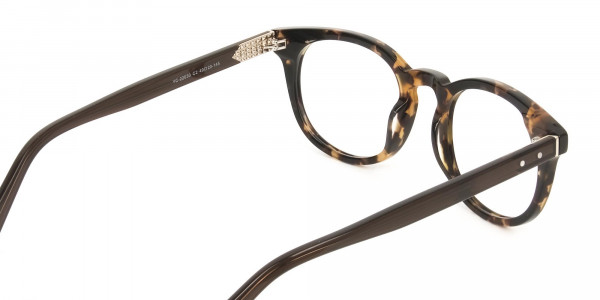 Wayfarer Round Havana & Tortoiseshell Handmade Acetate Glasses - 5