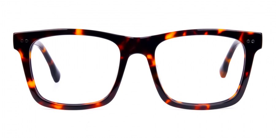 Tortoise and Brown Square Glasses
