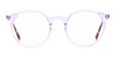 Crystal Pastel Purple & Rose Red Tortoise Glasses