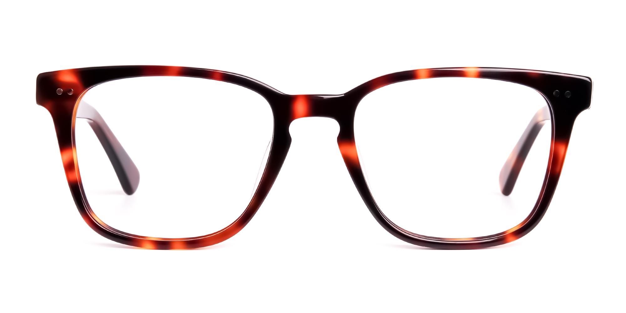 Havana Tortoise Shell Full Rim Wayfarer Glasses