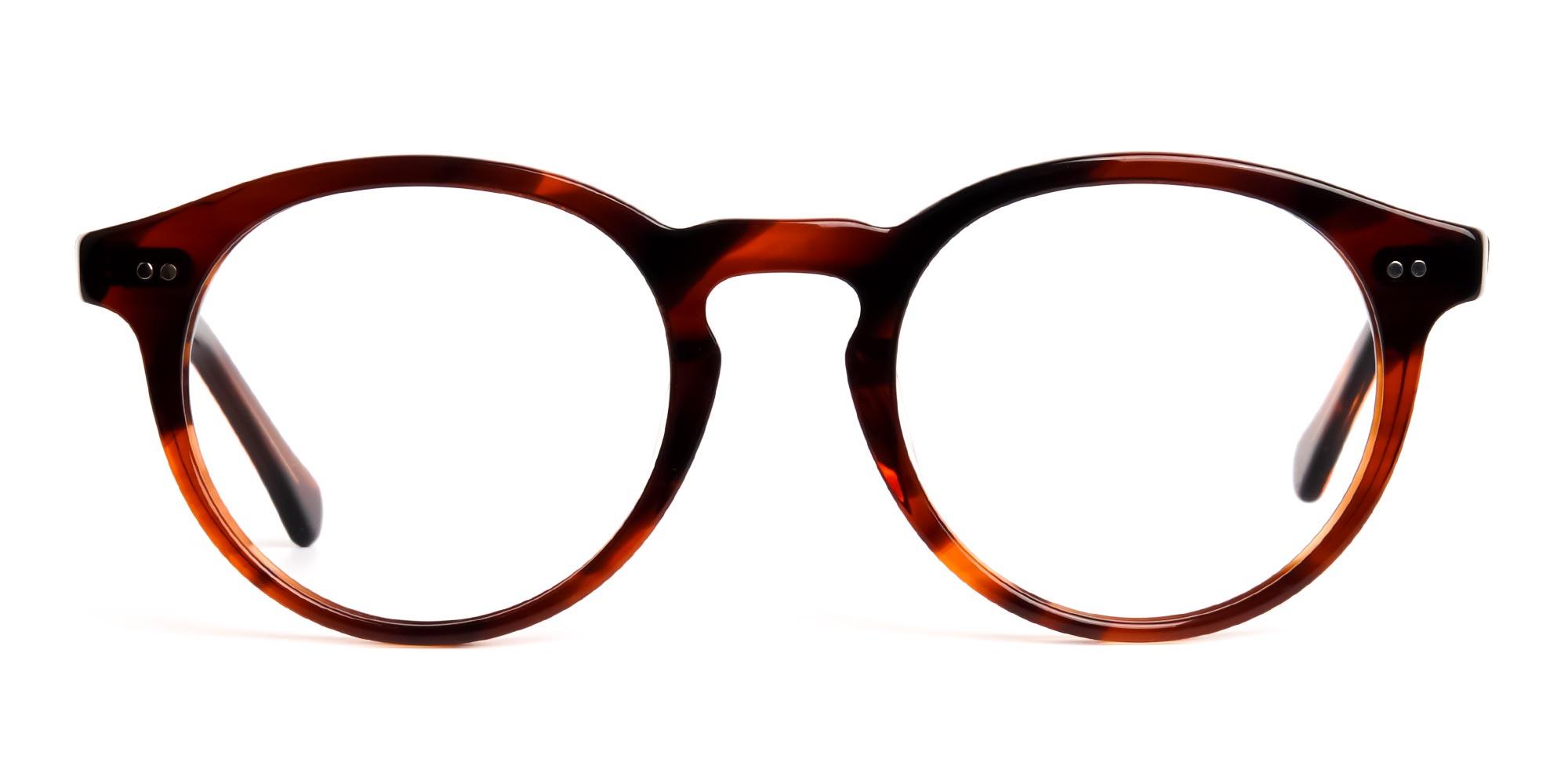 Dark Black and Brown Tortoise Shell Glasses