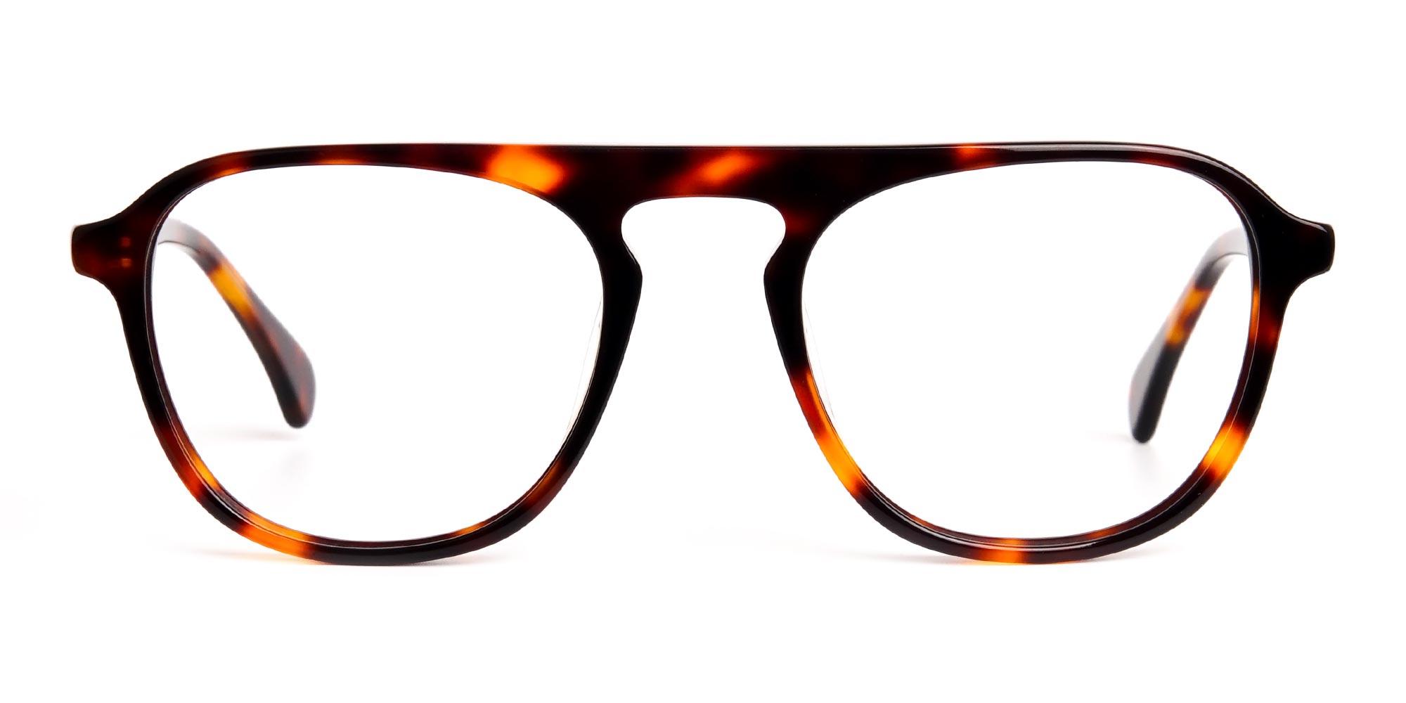 Havana & Tortoise Shell Aviator Wayfarer Glasses