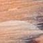 Wooden Brown & Spots