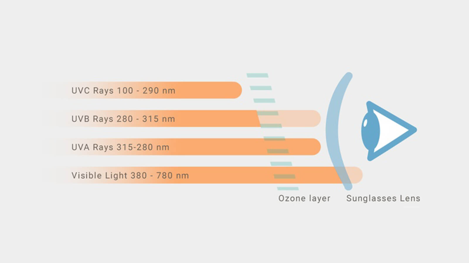 The why, what, how of 100% UV protection sunglasses.