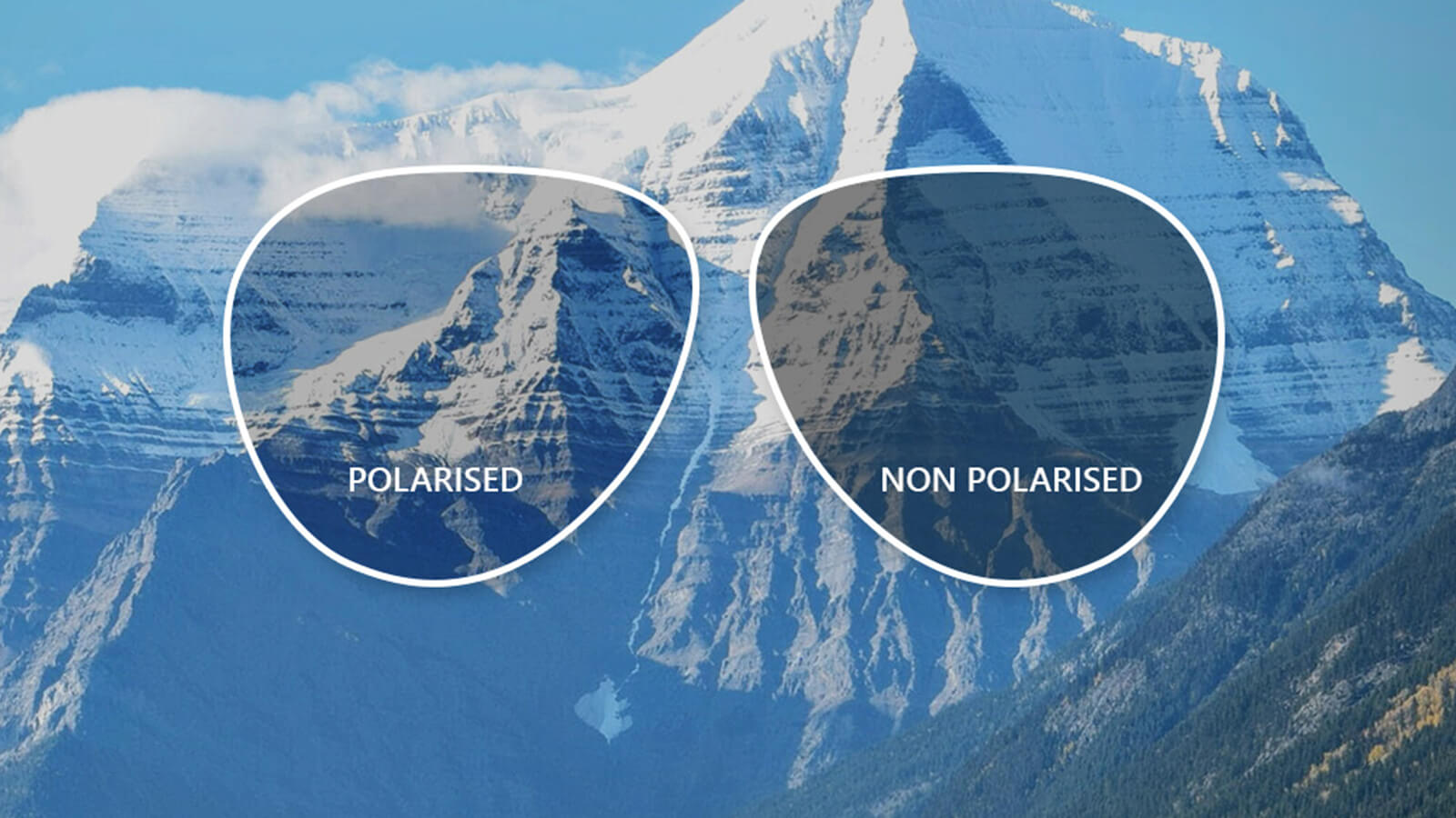 Are Polarized lenses bad for your eyes?