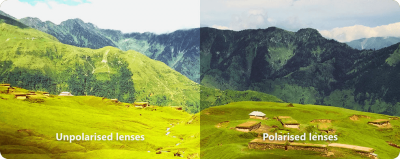 Difference between polarised and unpolarised lenses