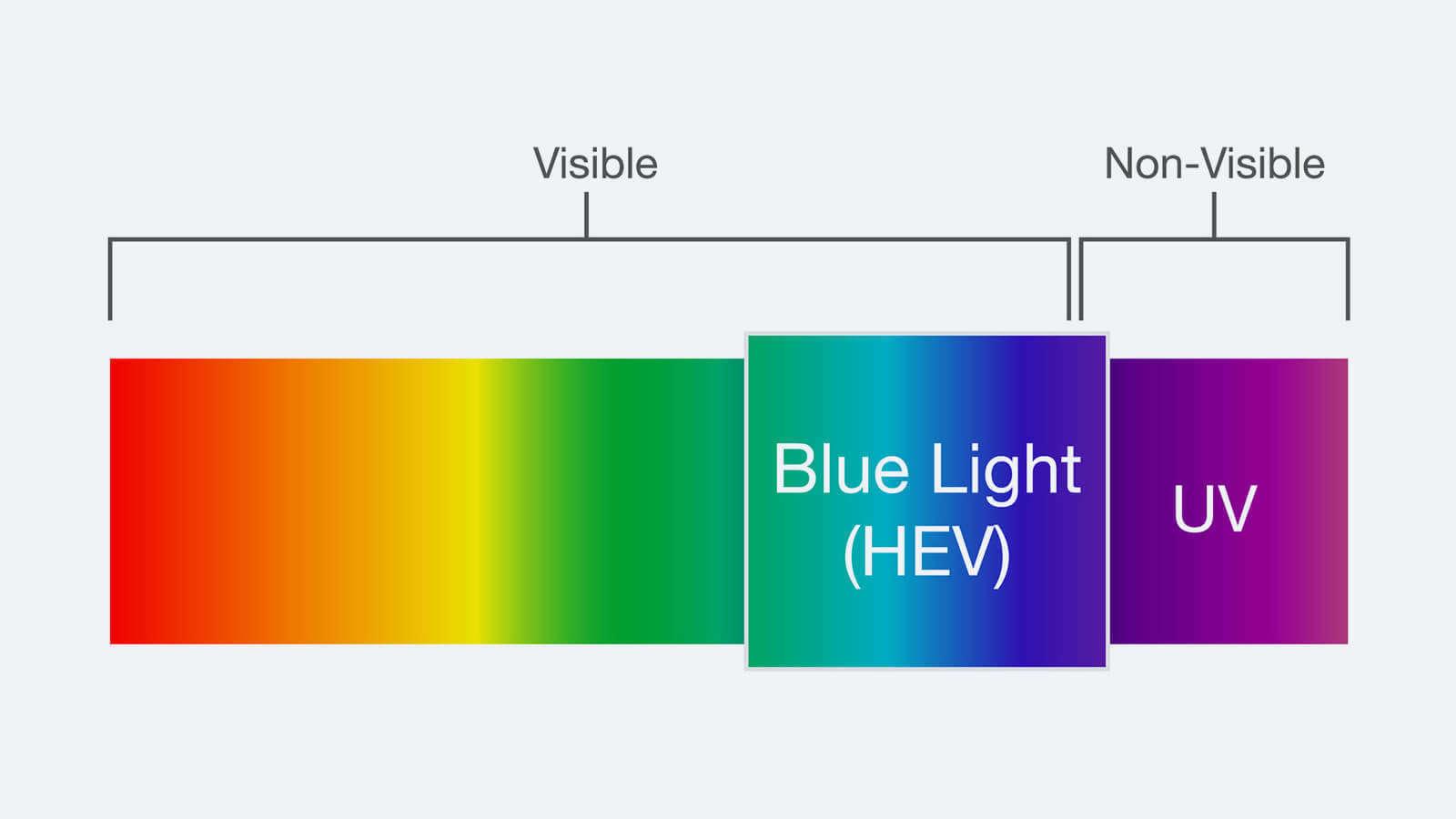 HEV-light