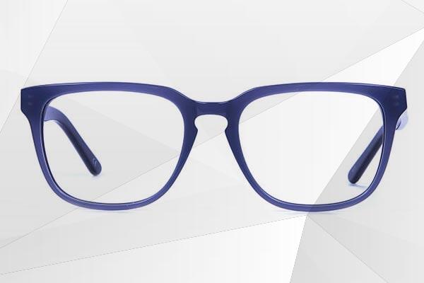 Wayfarer Acetate Glasses