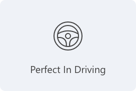 Perfect In Driving