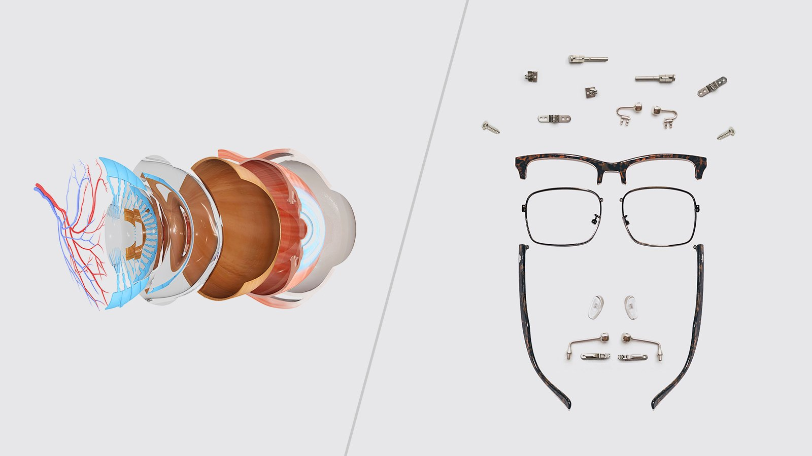 The only Glasses Glossary you'll need